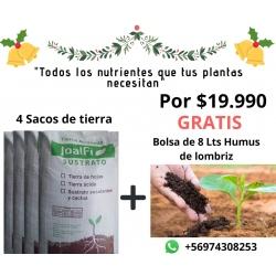 Pack Navidad 4 Tierras + 8 Lts Humus